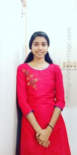 Harikrishna M.P. (makam),